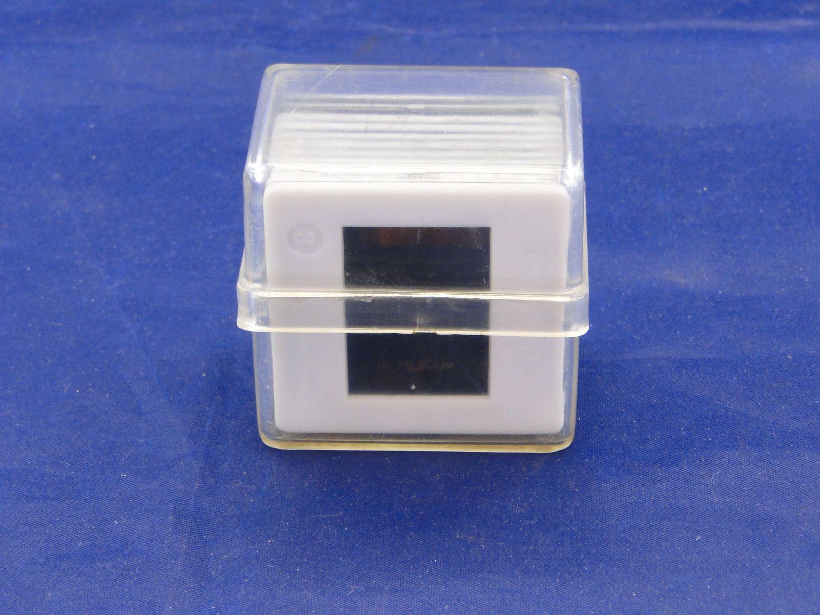 DSC06451.JPG (1600×1200)