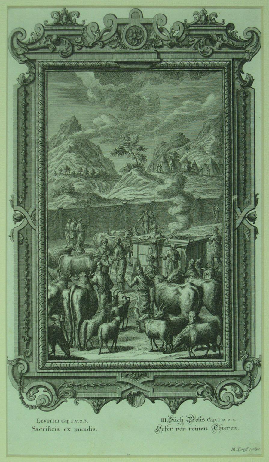 97-23kn.JPG (895×1534)