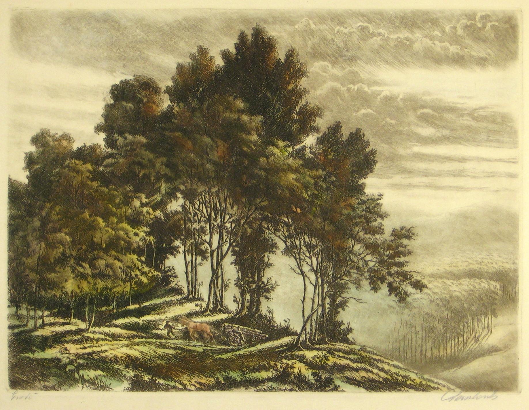 48-7kn.jpg (1837×1425)