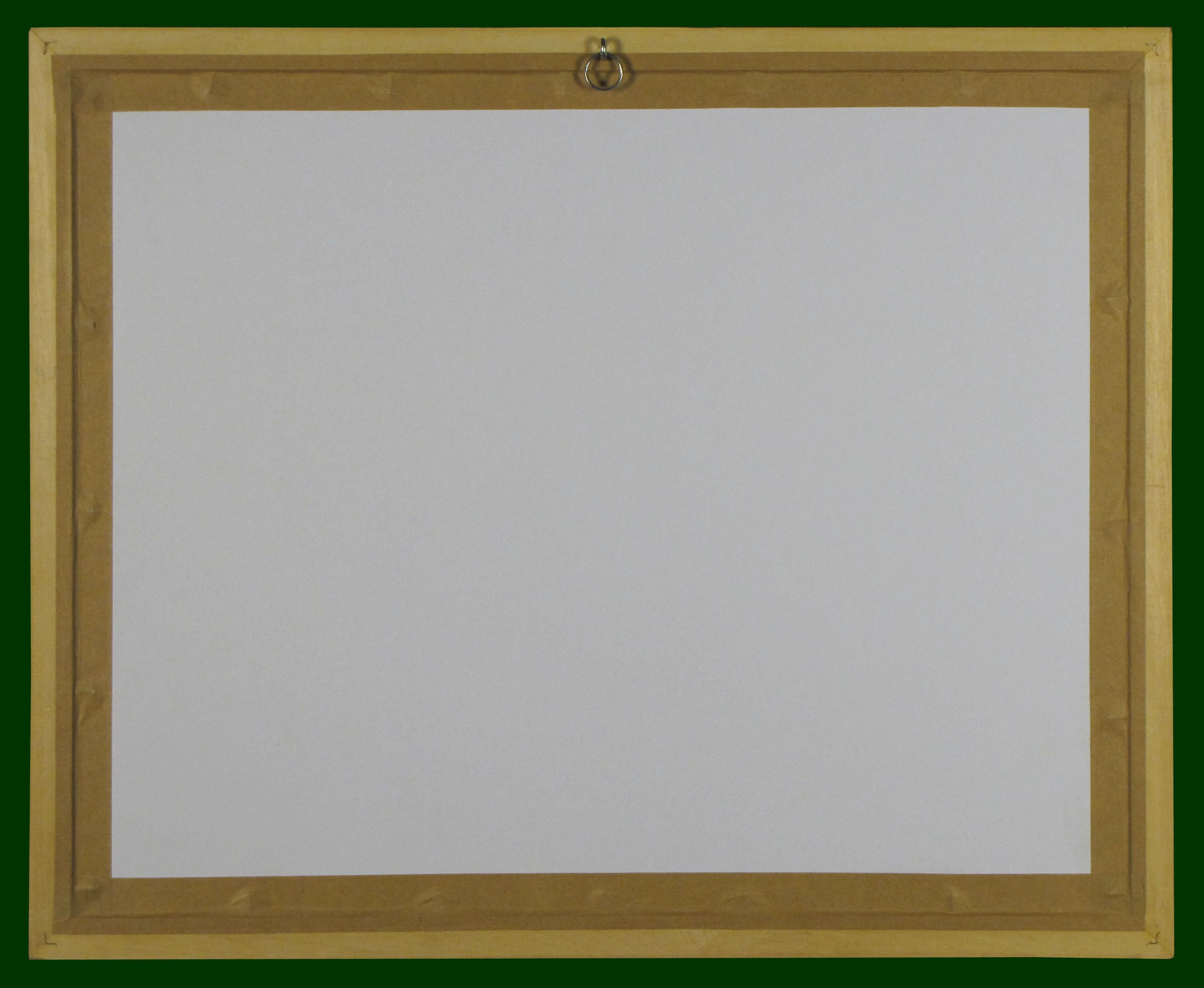 4-9h_t.jpg (3274�2686)