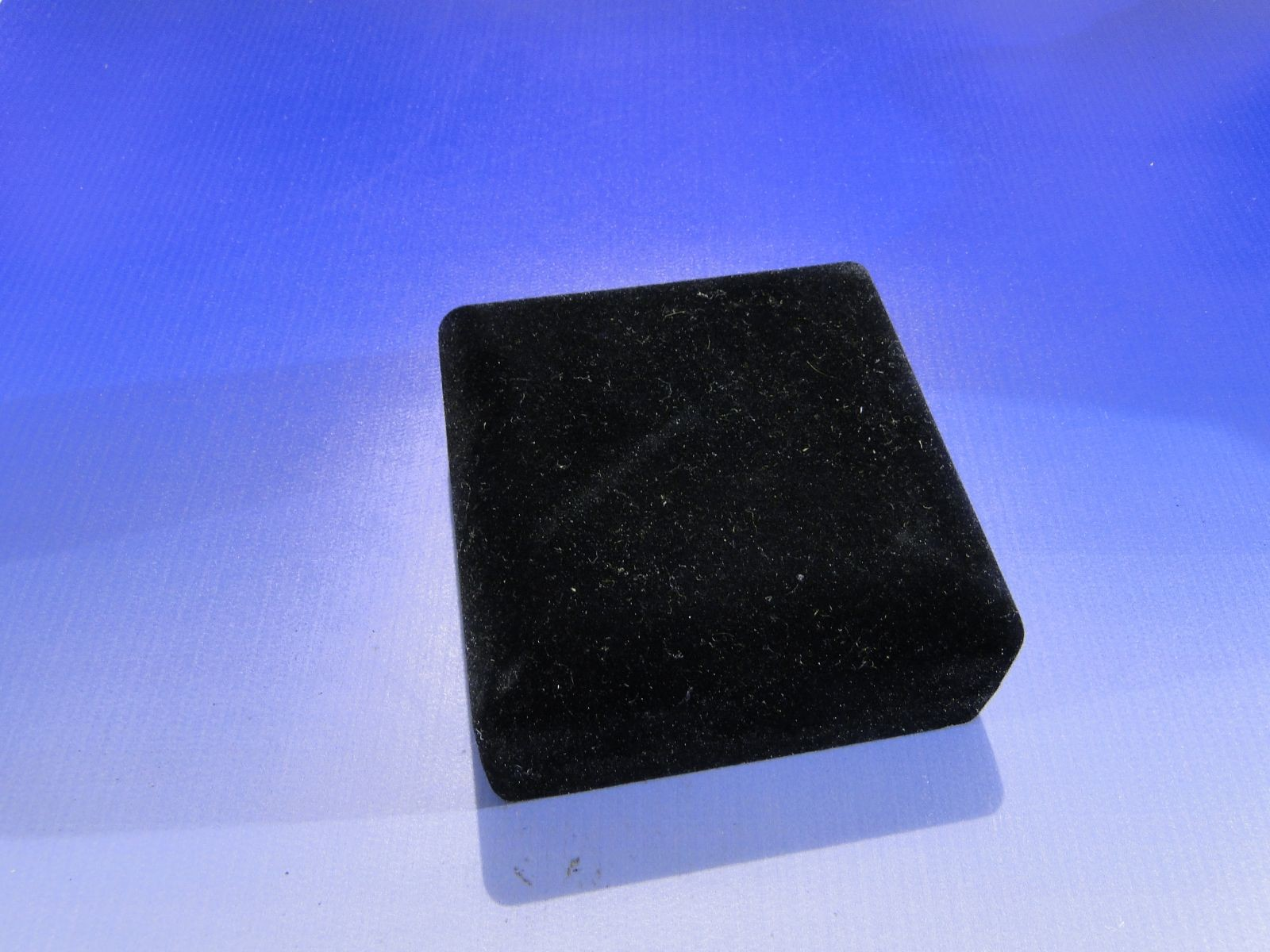 DSC02917.JPG (1600×1200)