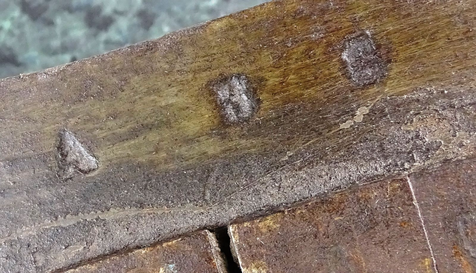 DSC00424.JPG (1600×918)