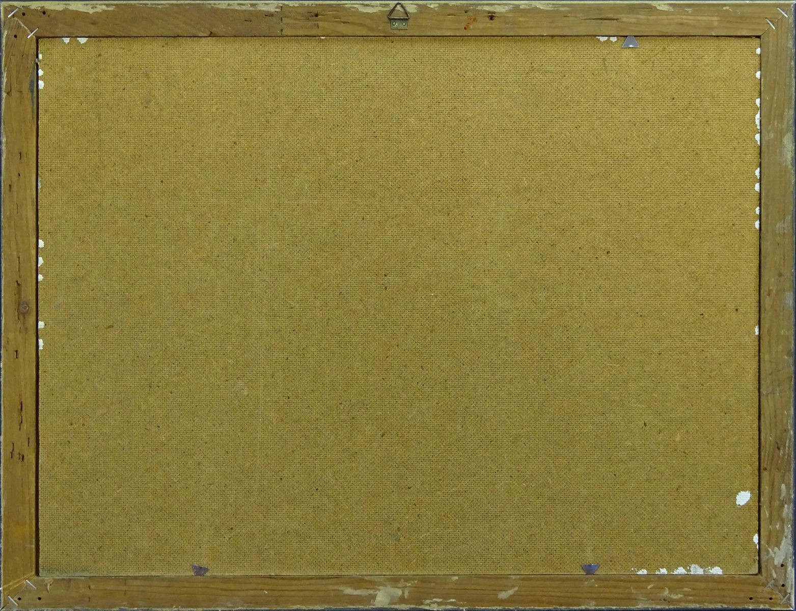 DSC01236.JPG (1563�1200)