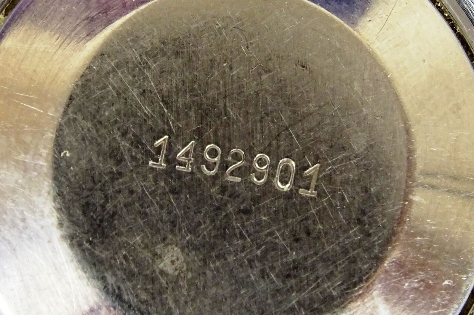 DSC06572.JPG (1600×1063)