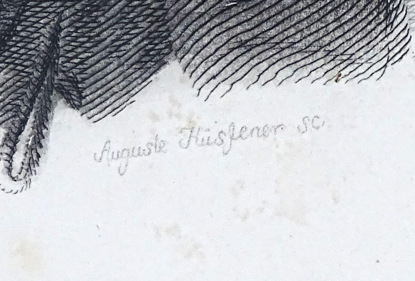 DSC03351.JPG (1362×924)