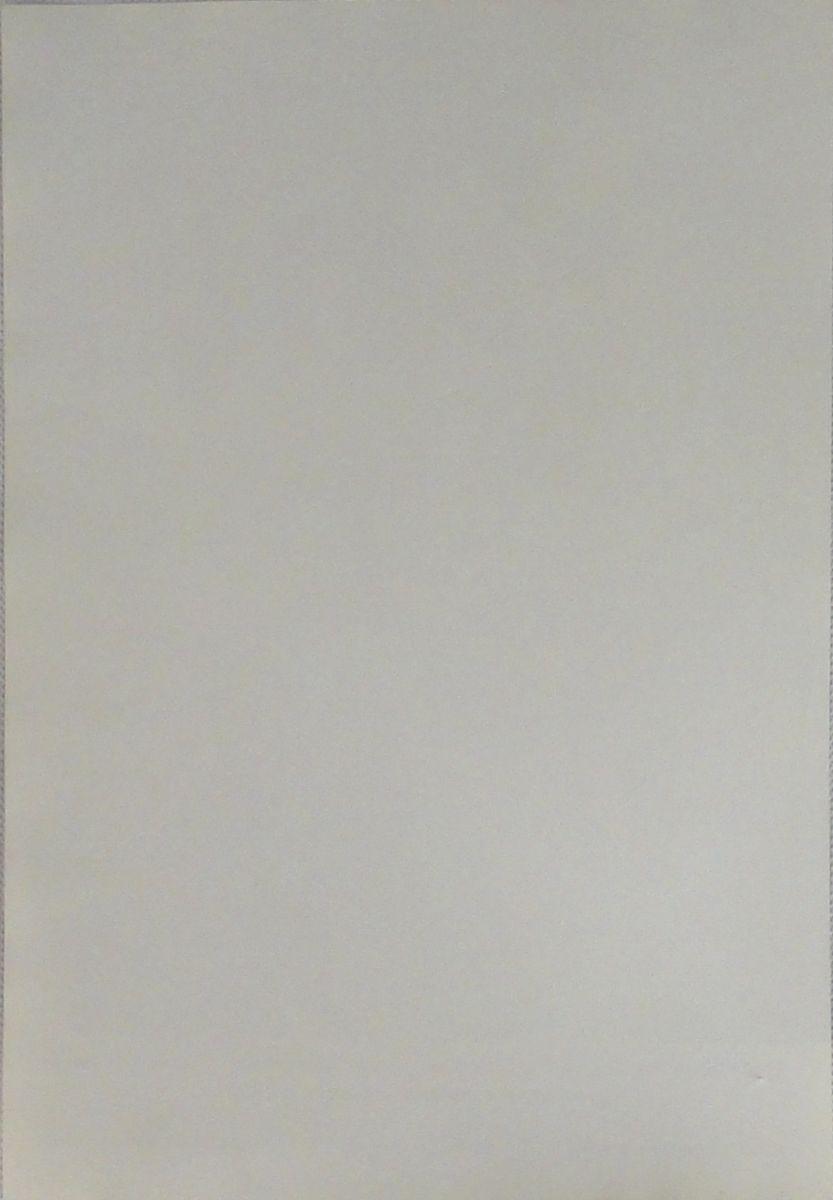 DSC05206.JPG (833×1200)