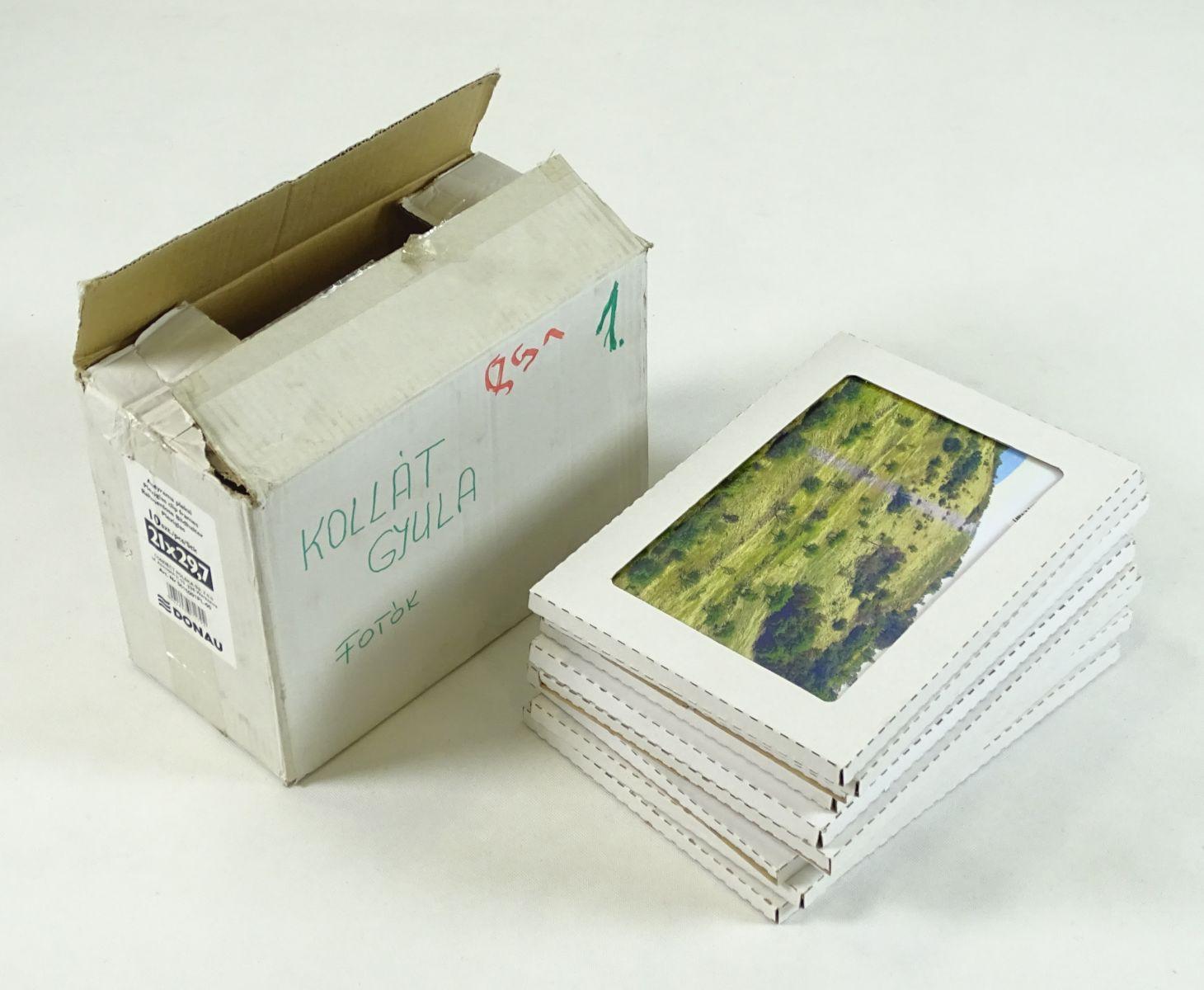 DSC05560.JPG (1460×1200)