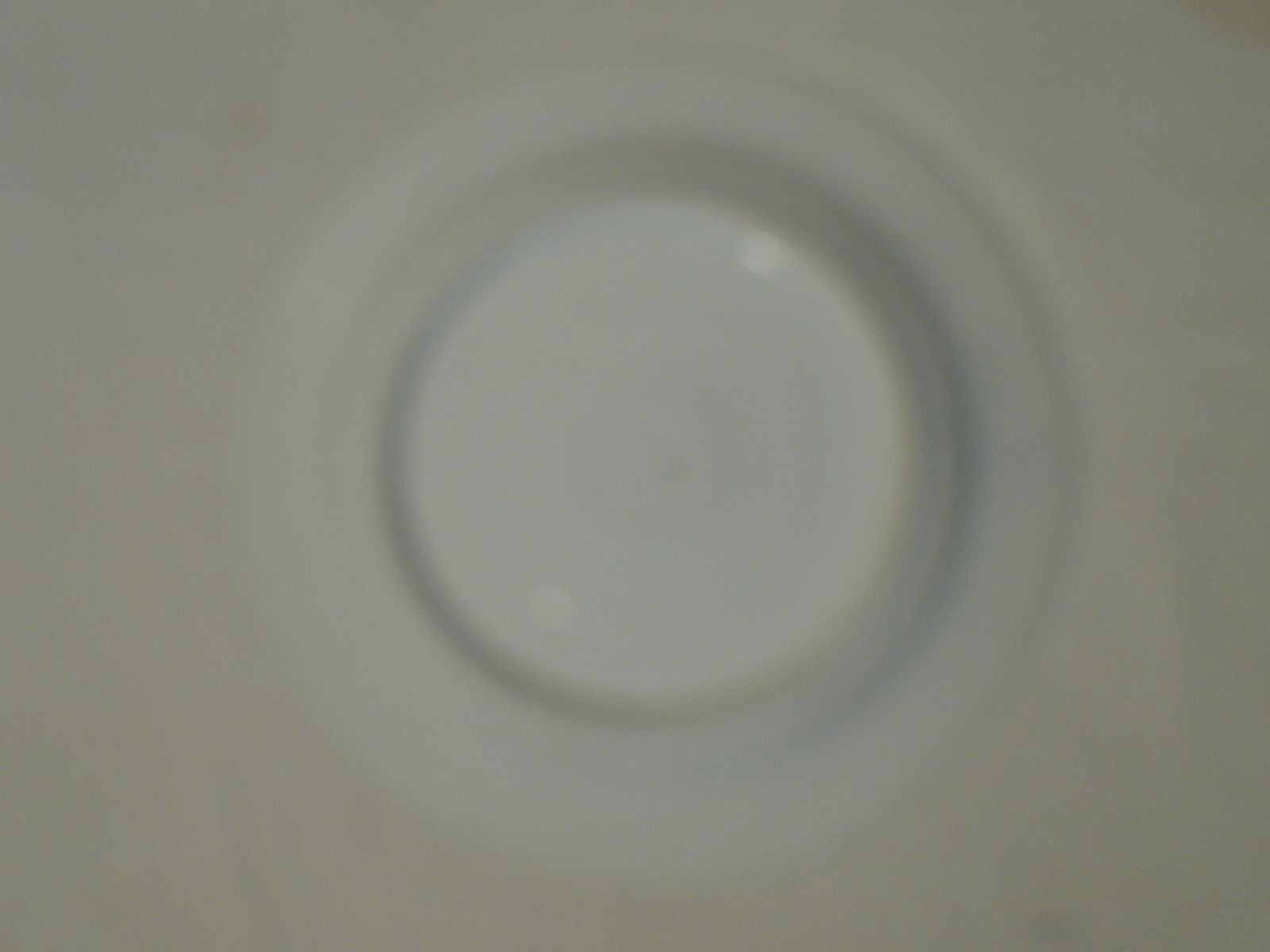 DSC06431.JPG (1600×1200)