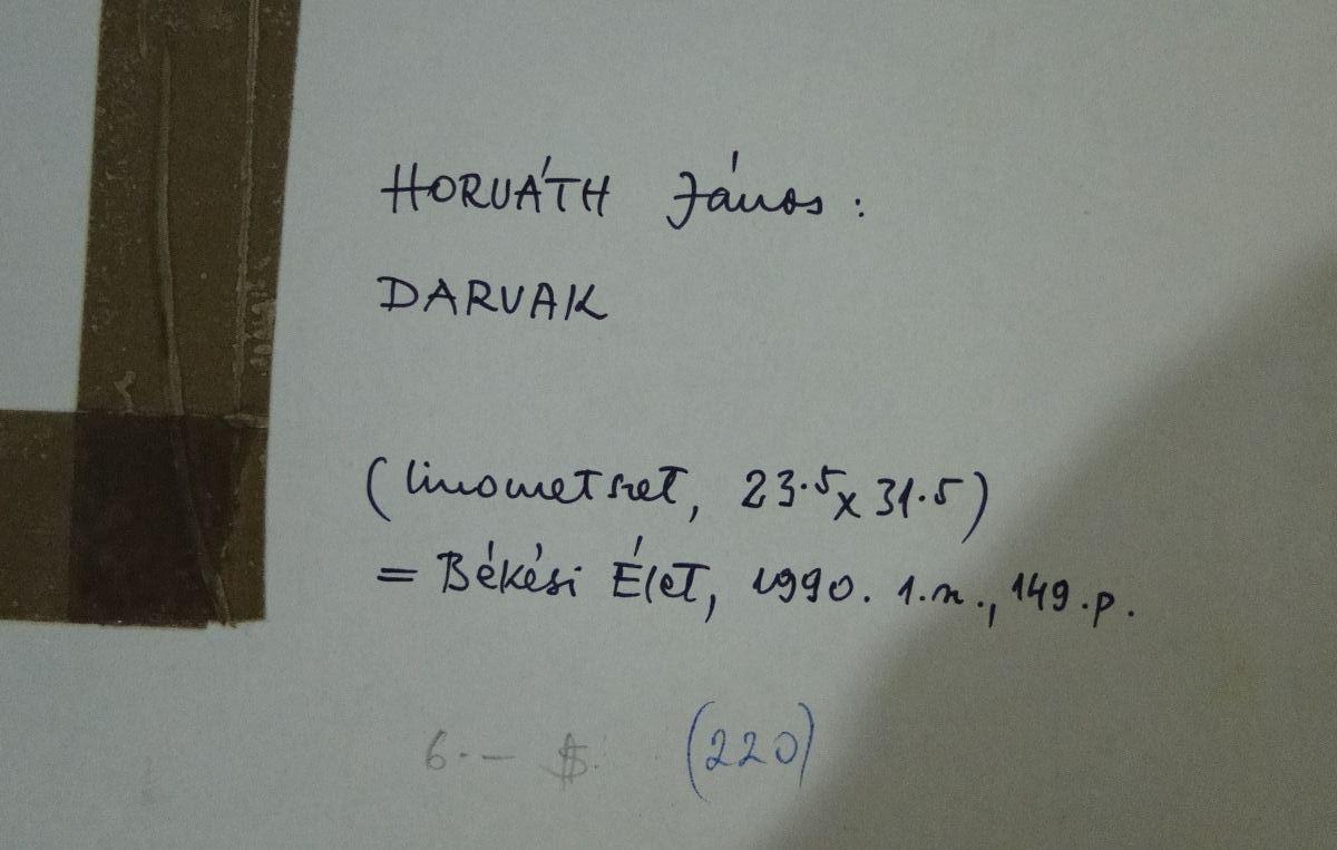 DSC05696.JPG (1200×763)