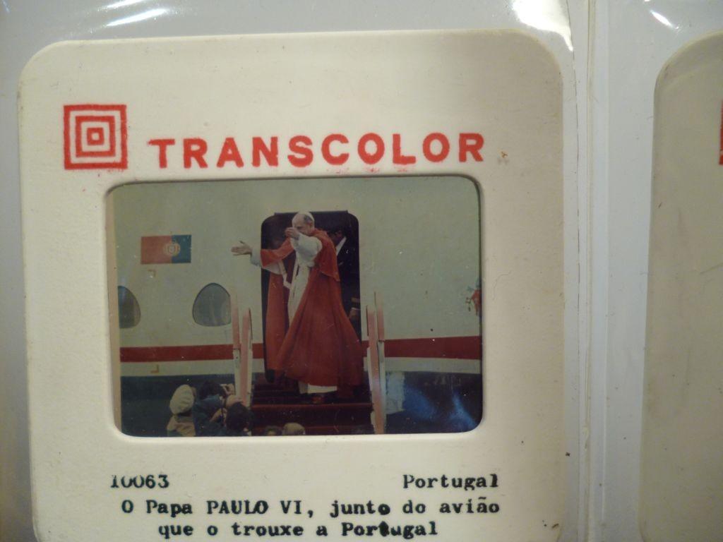P1210539.JPG (1024×768)